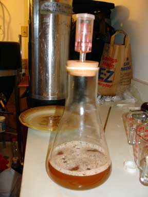 Picture of Step by Step: Making a Yeast Starter for Beer