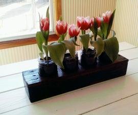Indoor Flower Garden