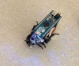 Control a Cockroach with Arduino for under $30