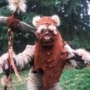 Adult Ewok Costume - Wicket
