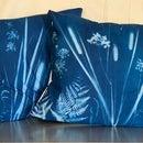 Sunprinted Pillows