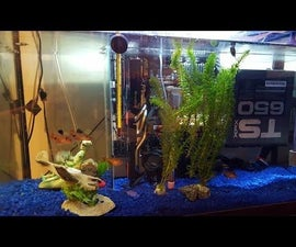 Oil Cooled Pc Case With Live Fish!