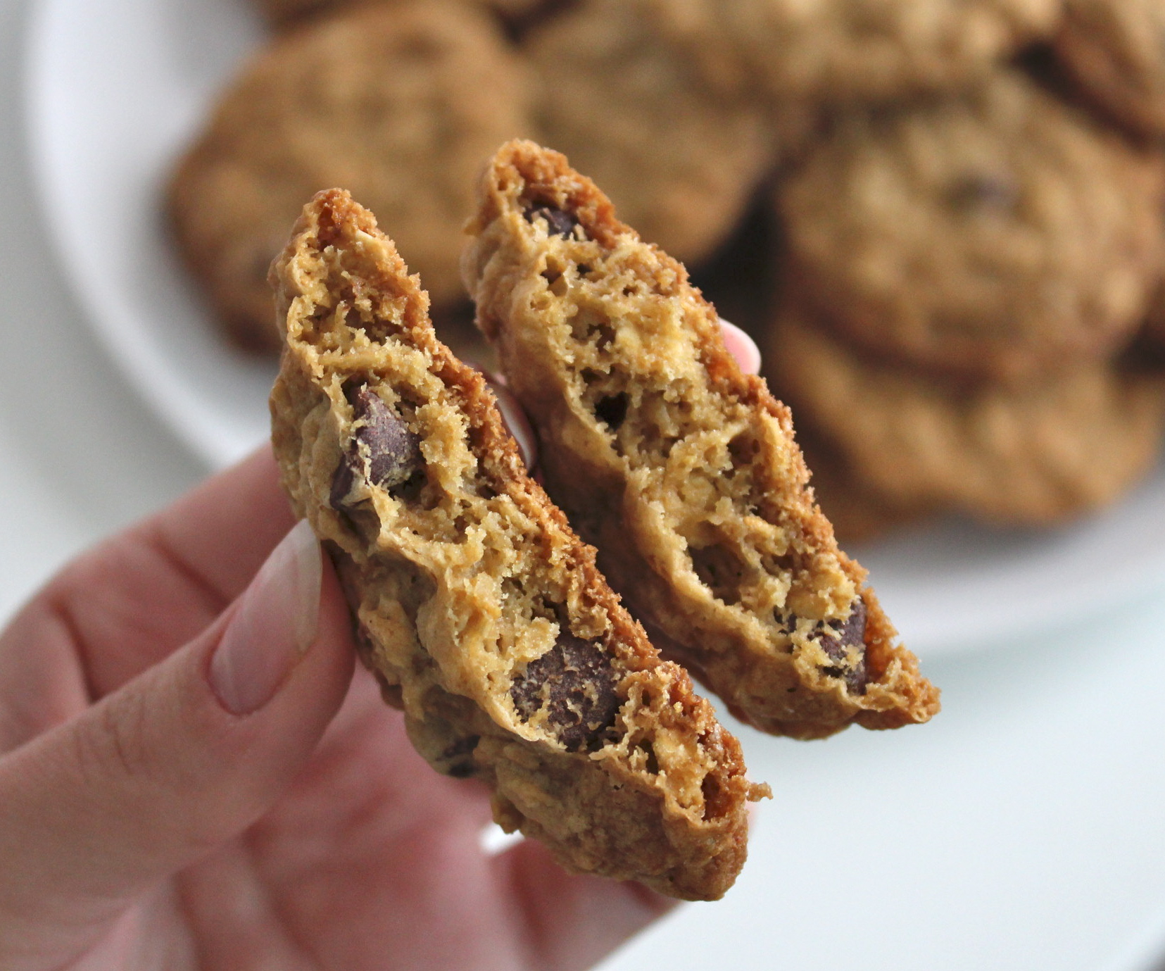 Picture of Dairy Free Oatmeal Cookies