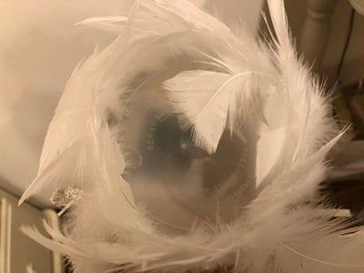 Stick Each Feather Around the Shaped Box