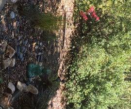 Bioswale AKA Zen Storm Water Garden