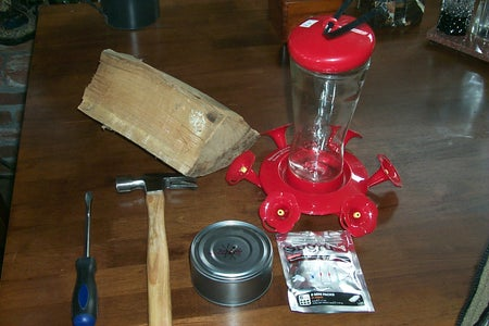 The 'Anti-Ant' Hummingbird Feeder Protector