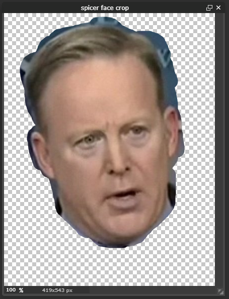 Picture of Design Spicer Face
