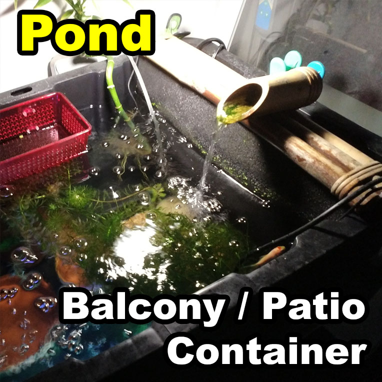 Picture of Container Patio Balcony Pond