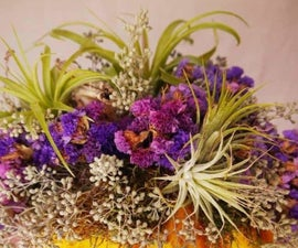 4 Easy Steps to Decorating a Yellow Pumpkin With Purple Statice and Air Plants
