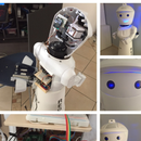 REGO Version 2019: the DIY Telepresence and Service Robot.