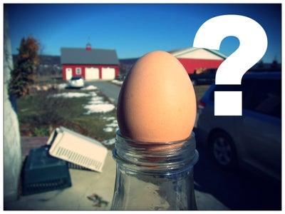 Egg in a Bottle