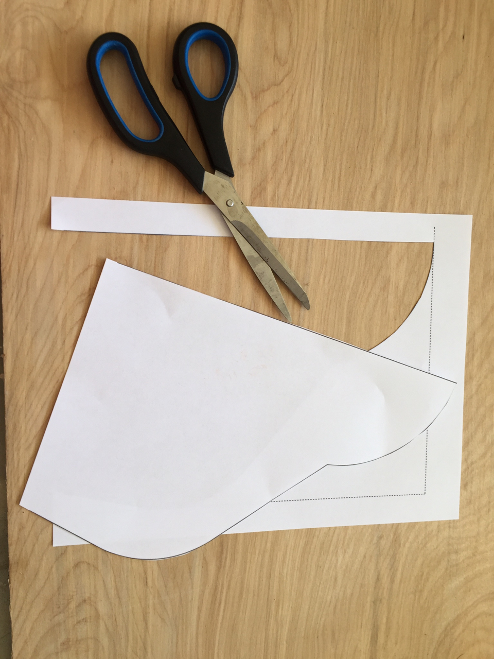 Picture of Cut Out the Templates
