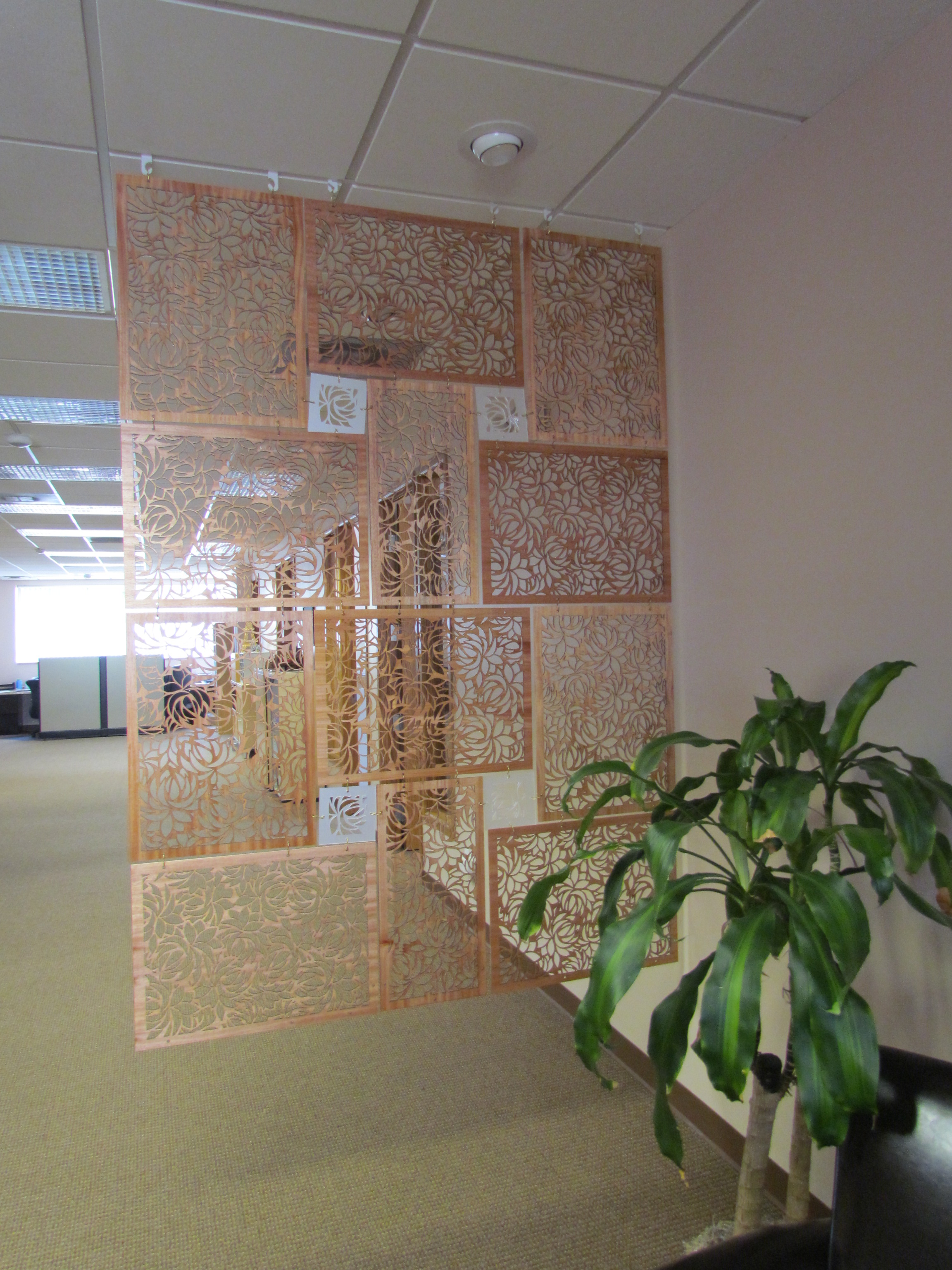 Picture of Room Divider Screen With a Laser
