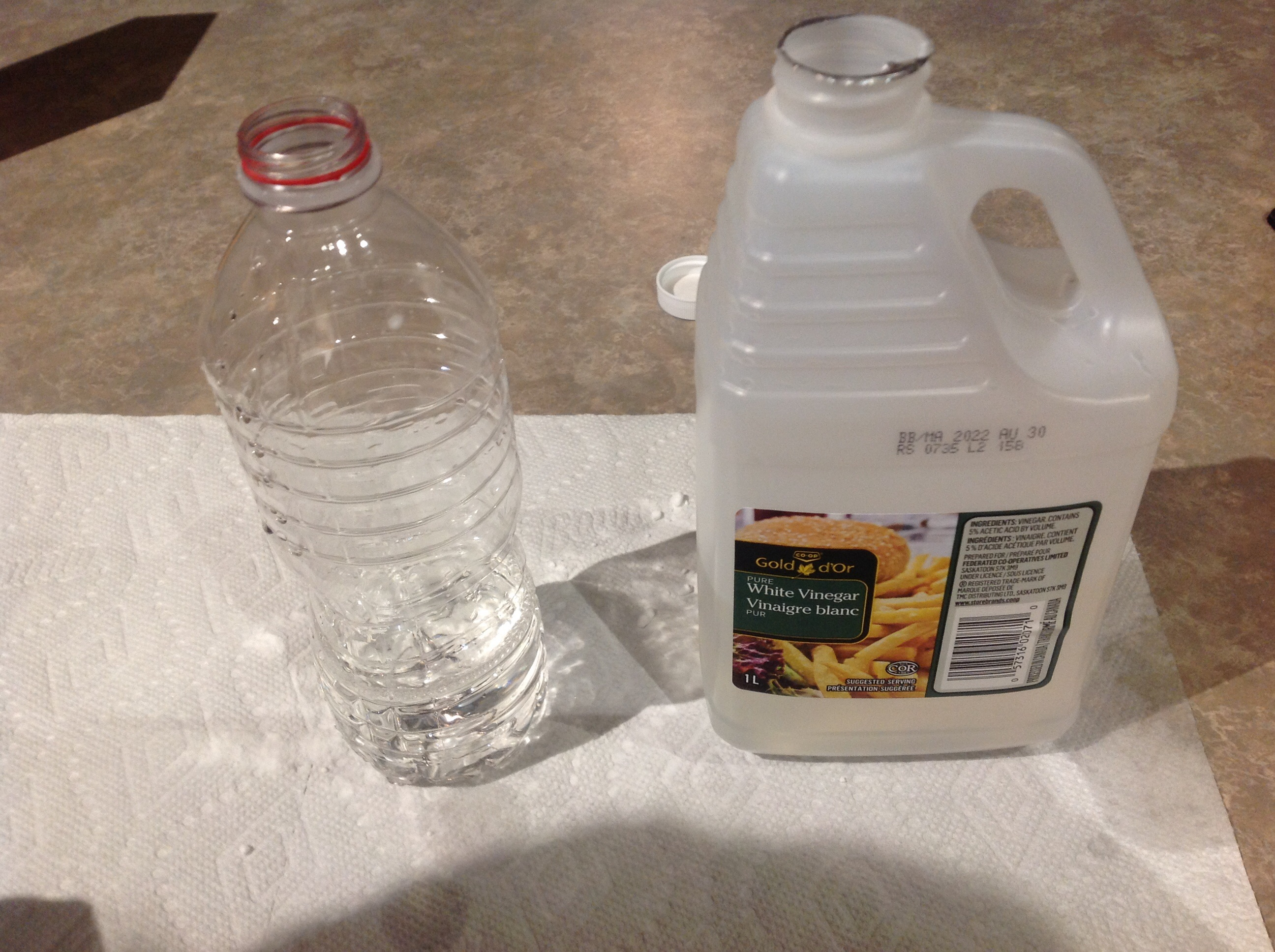 Picture of Putting Vinegar in the Bottle