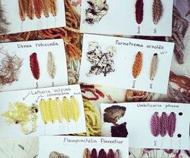 Creating Lichen Dyes ( Letharia vulpina or Wolf Lichen)