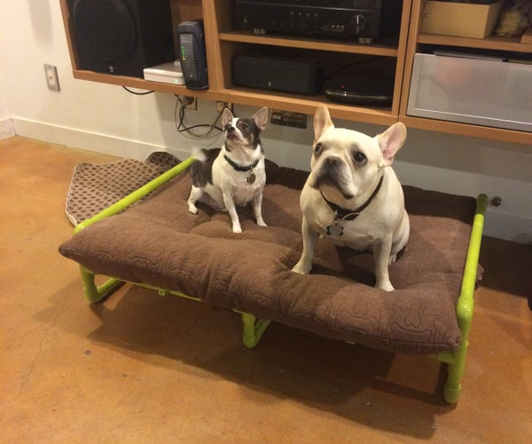 PVC Pipe Raised Dog Bed