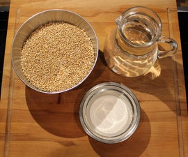 How to Easily Reproduce / Grow Mushroom Spawn.