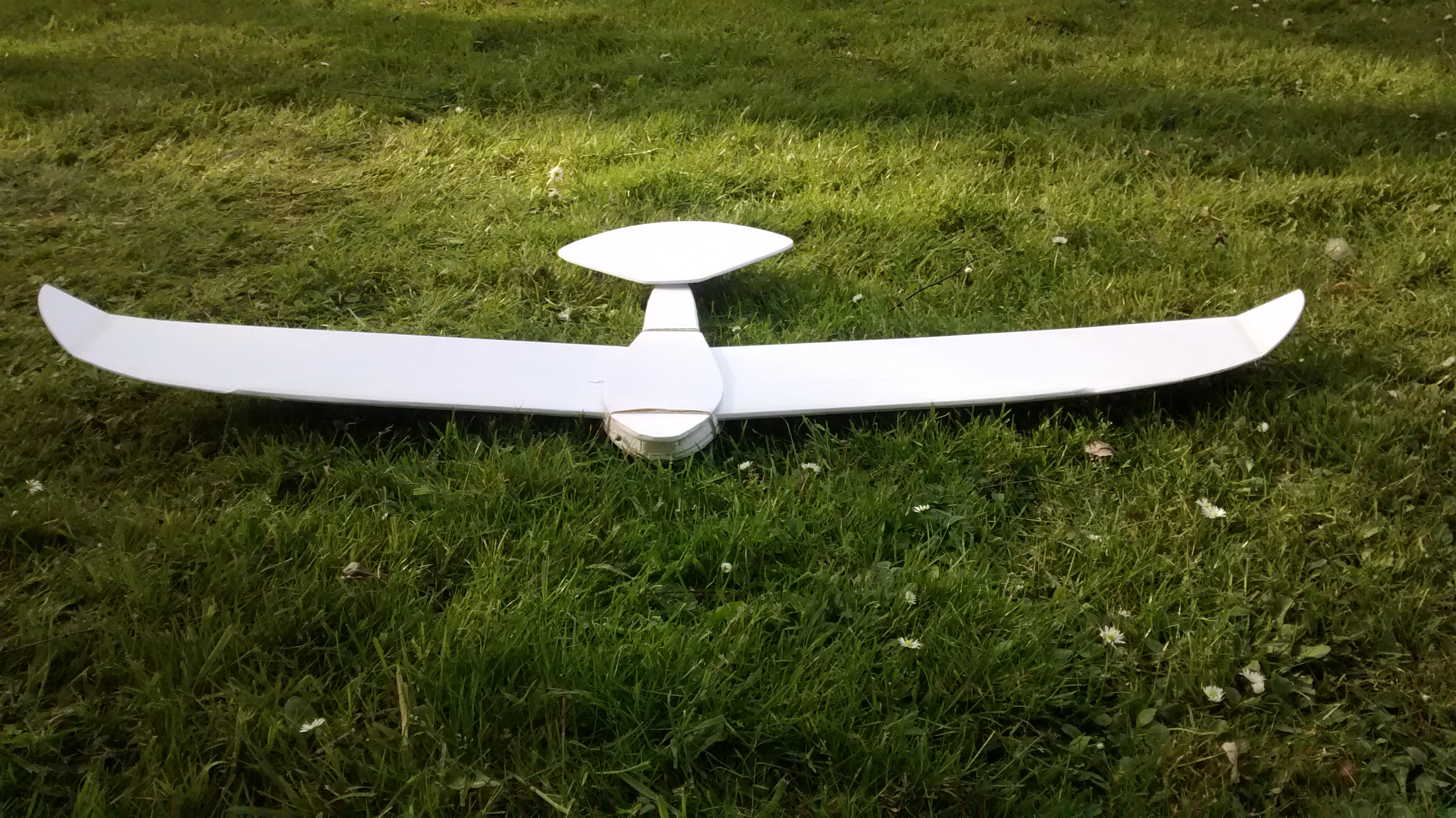 Picture of Eagle-like Glider by Mathieu Baesen