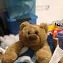 Pebbles the Sleepytime Bear