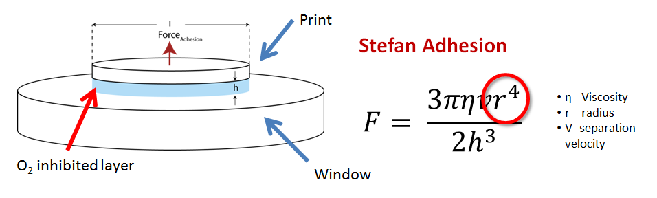 Picture of Model 2: Stefan Adhesion,why Just Pulling the Print Up Is Difficult