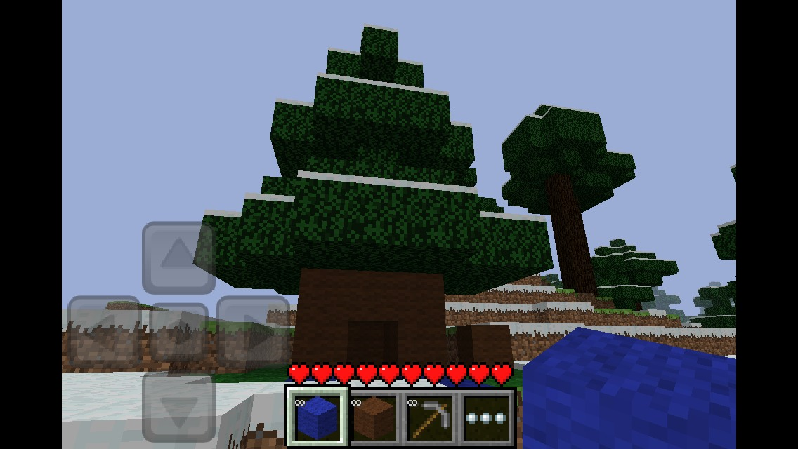 Picture of Underground Tree House