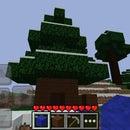 Underground Tree House