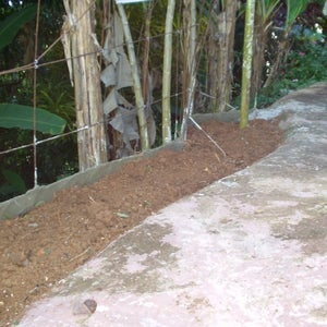 Garden Retaining Wall -- Plastic Window Screen and Cement