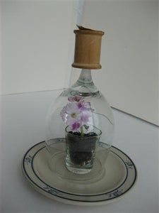Other Examples of Shot & Wine Glass Terrarium / Seed Starter