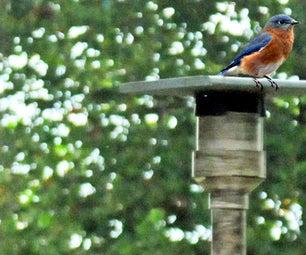 Moose PVC Bird Nest Box
