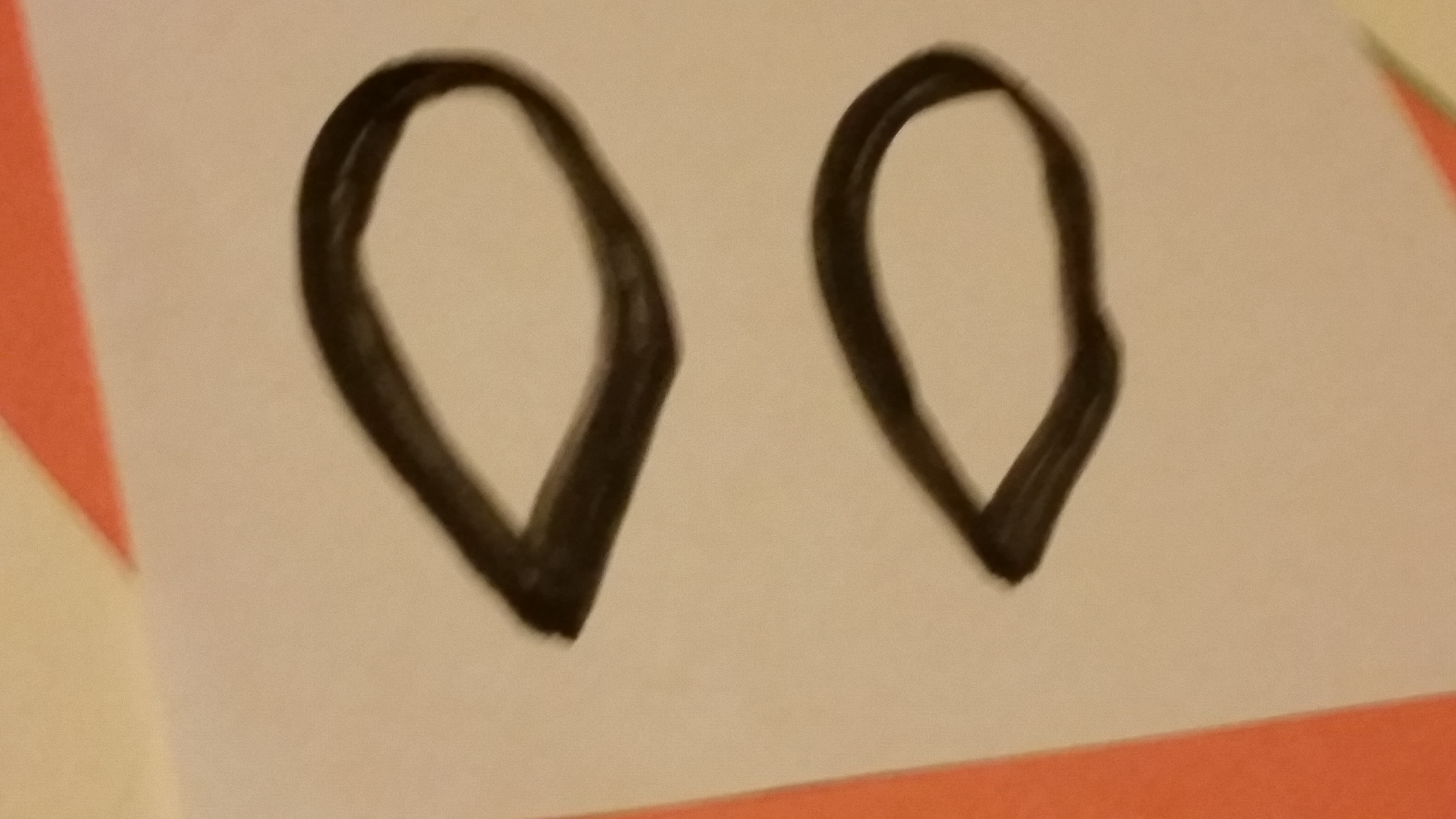 Picture of Cow Ears