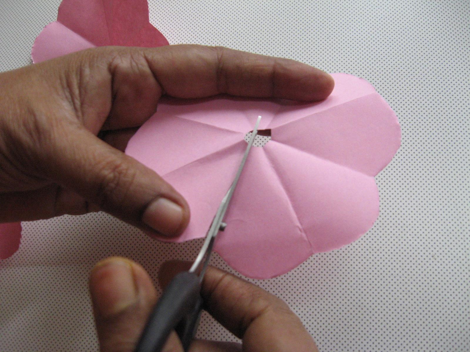Picture of Cut Segments