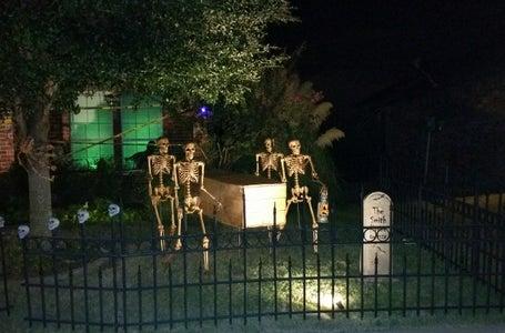 Skeleton Pallbearers