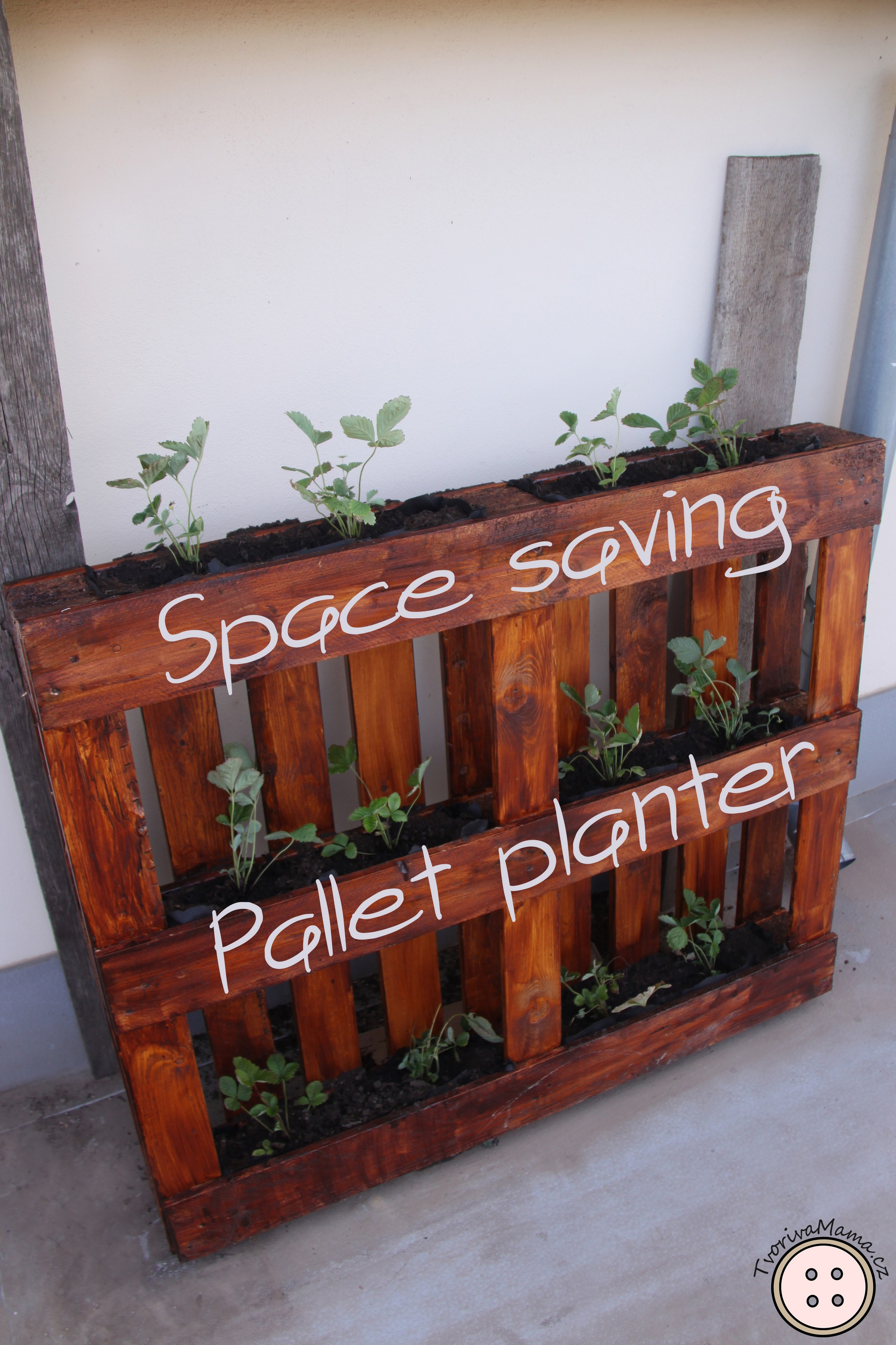 Picture of Space Saving Pallet Planter