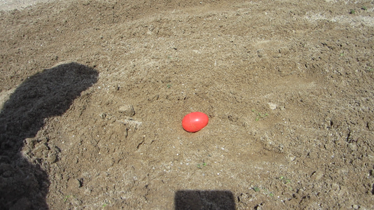 Excavate the Eggs