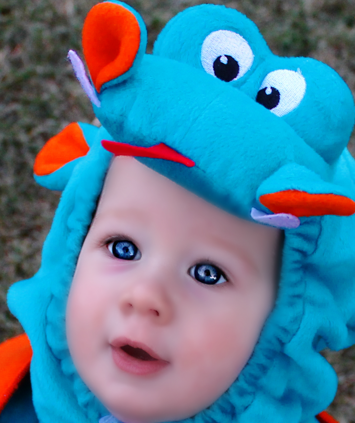 Picture of Blue Eyed Dragon