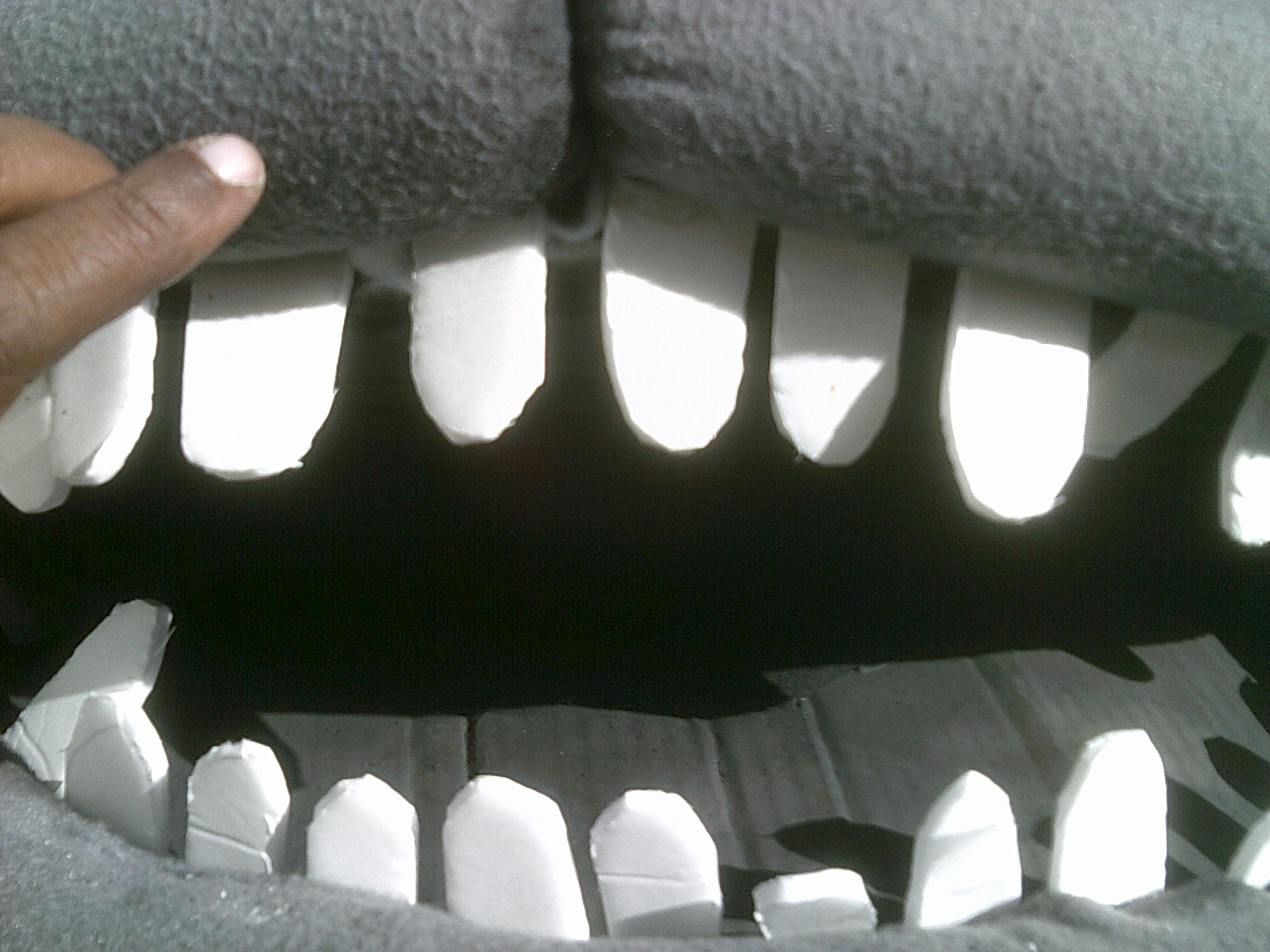 Picture of I Has Teeth