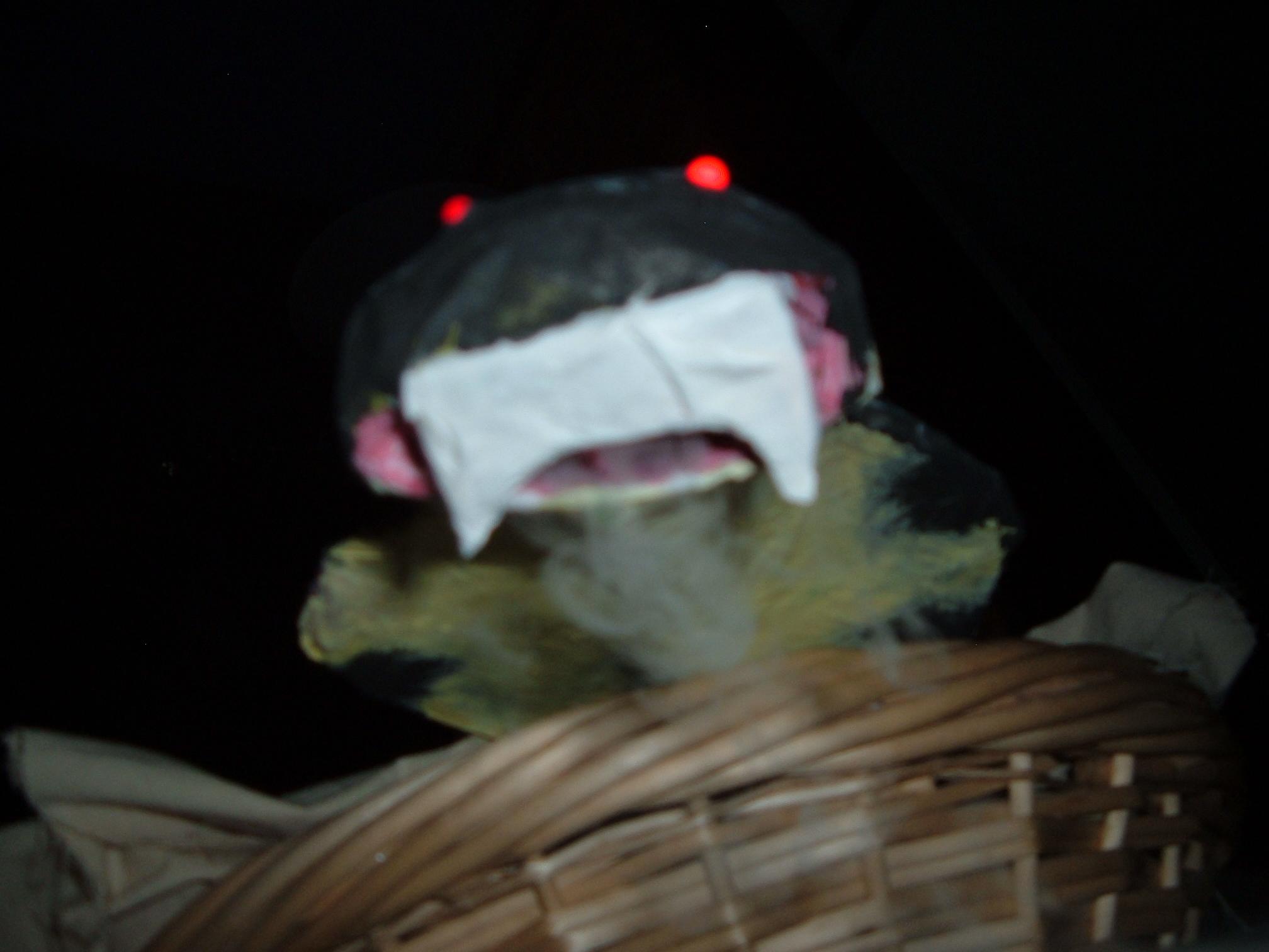 Picture of Smoking Snake