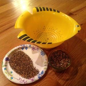 Add More Manzanita & Leaf Litter