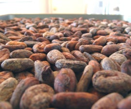 From Bean to Bar: Dark Chocolate from Scratch