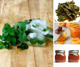 Canning & Preserving Recipes