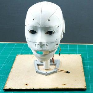 Assembling the Humanoid Head