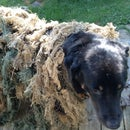How To Make A Military Grade Ghillie Suit