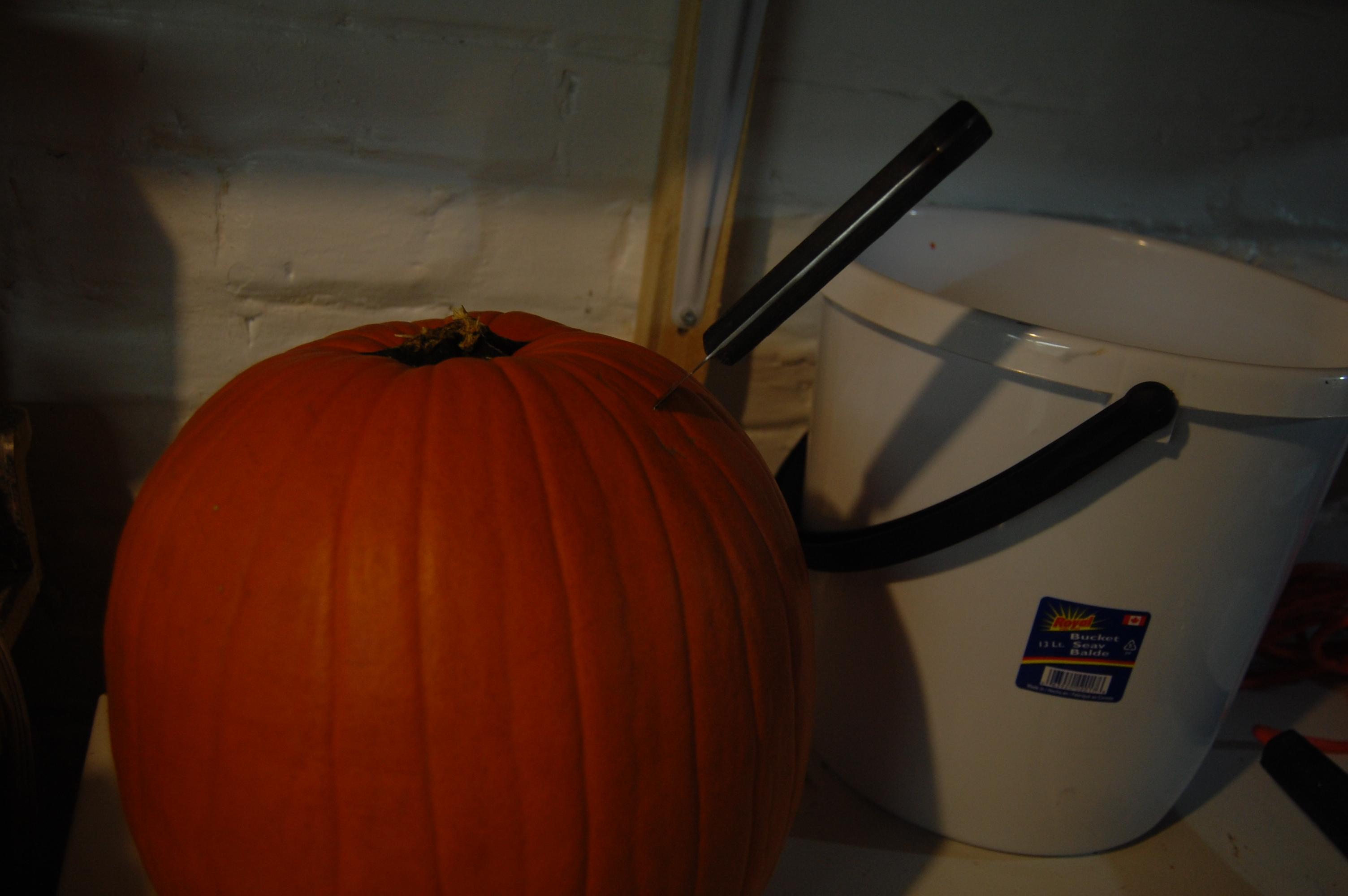 Picture of Cut Open the Pumpkin