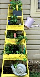 Plant and Enjoy!