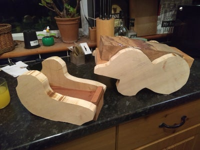The Lower Jaw Part 1