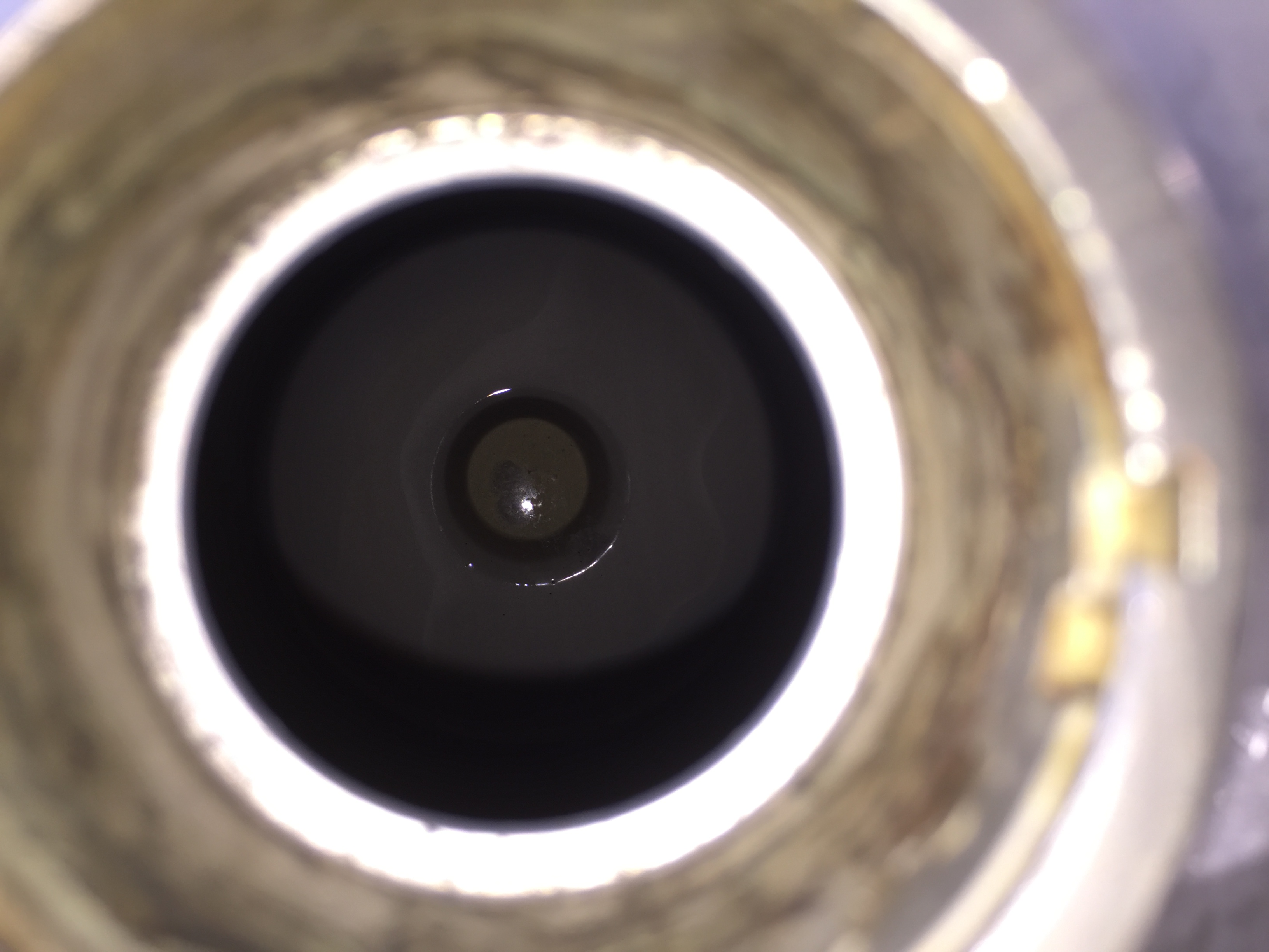 Picture of Inspect the Keg Internals