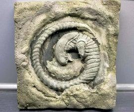 Alien-Chestburster-Fossil