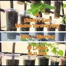 A Simple&Easy Window Vertical Farm - Part 2 WATERING