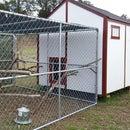 DIY Garden Shed Chicken Coop