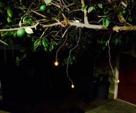 Firefly Lights Using Dollar Store Tea Lights